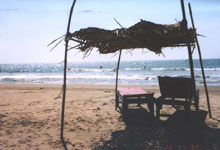 morjim beach shack hut restaurant